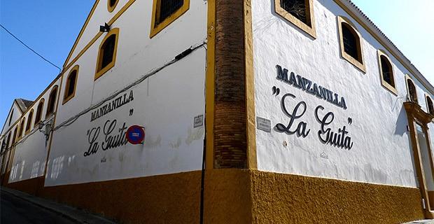 Bodegas: Hijos de Rainera Pérez Marín