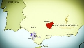 do-montilla-moriles