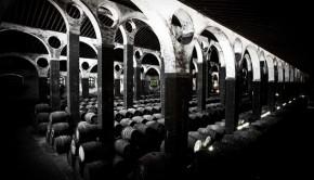 bodega-architecture-jerez-arboledilla