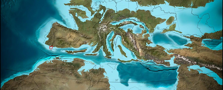 Sherry region - albariza - Oligocene