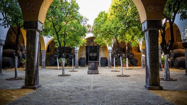 Visits: Visiting Bodegas Diez-Mérito