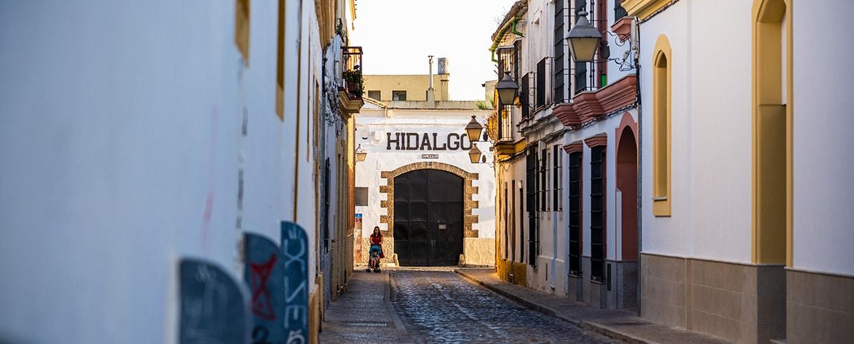 Bodegas Hidalgo