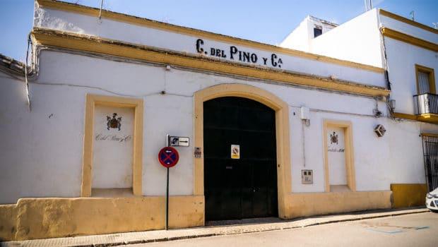 Bodegas: Cayetano del Pino