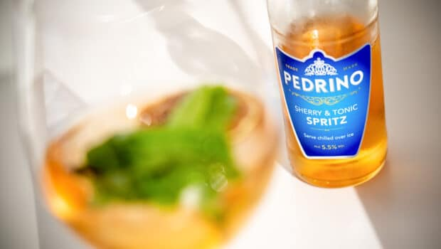 Other: Pedrino Sherry & Tonic Spritz