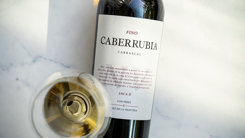 Fino Caberrubia - Saca II - Luis Pérez